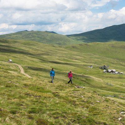 Weitläufige Wanderwege führen, ab Bergstation, durch die Nockberge