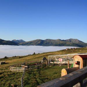 """Aus dem Nebel auf den Berg - Blick von der """"Blutigen Alm"""" auf das Nebelmeer im Tal"""