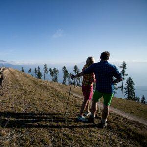 Nordic Walking am Goldeck