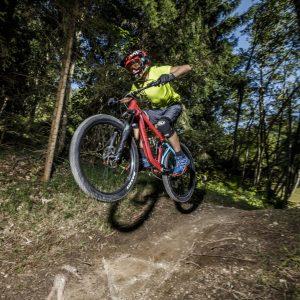 Weissensee - die Mountainbike-Naturtrails führen - wenn man will, herausfordernd - teils über Wiesen, teils im Wald ins Tal