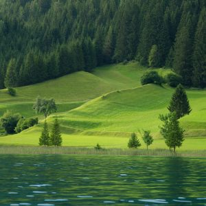 Weissensee - pure Naturschönheit zwischen Pracht-See und saftig-grüner Wiesen-Waldlandschaft